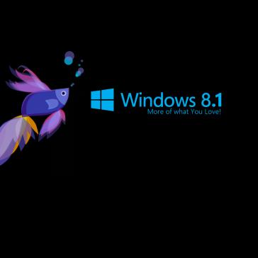 Free-Windows-8.1-HD-Wallpapers