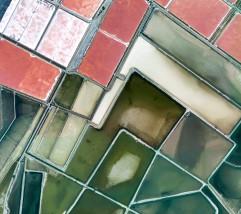 google-pixel-xl-wallpapers-6