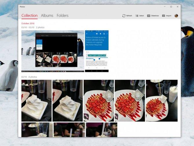 fotos-app-novo